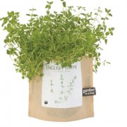 Garden in a Bag - Tijm