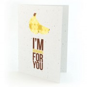 Botanical Paperworks Carte d'Amour à Planter - I'm Bananas for You