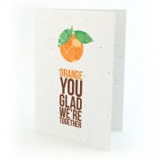 Botanical Paperworks Plantbare Orange You Glad