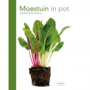 Lannoo Moestuin in Pot