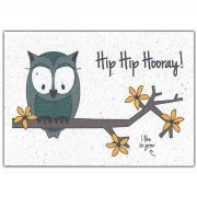 Bloom Your Message Bloeiwenskaart - Hip Hip Hooray Owl Plantbare wenskaart