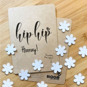 Bloom Your Message Bloeiwenskaart - Hip Hip Hooray - Confetti Plantbare wenskaart met confetti